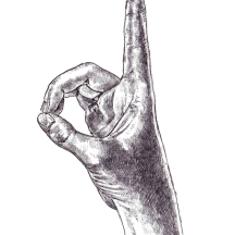 ASL D
