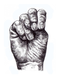 ASL N