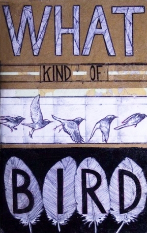 fiction project - what kind of bird