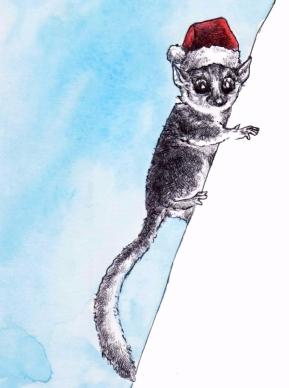lemur xmas 2016
